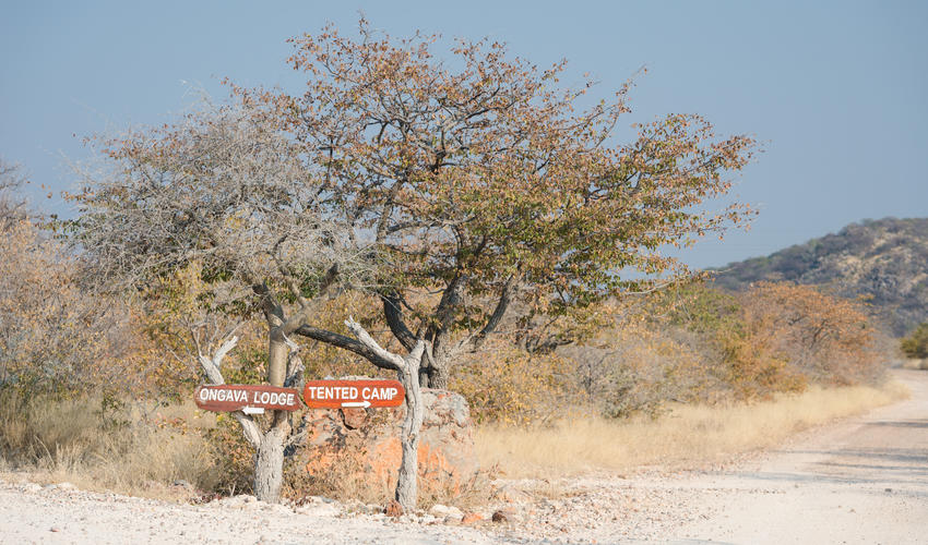 Signage to Ongava Tented Camp within the Ongava Game Reserve