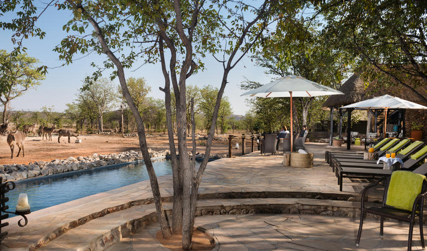 Deck at the main area with view over waterhole