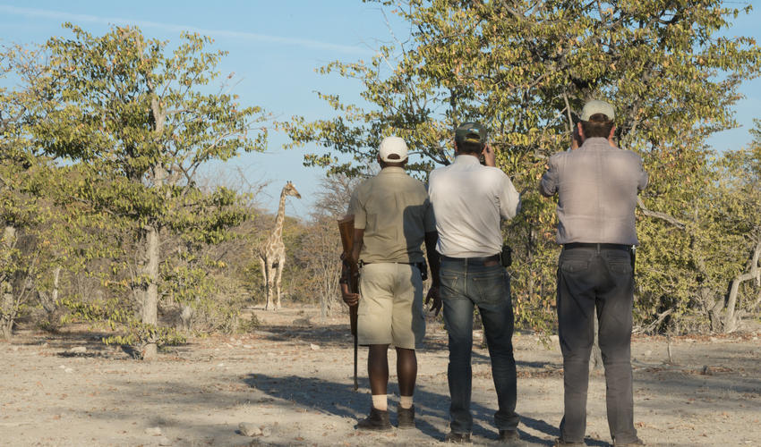 Guided nature walk on the Ongava Game Reserve