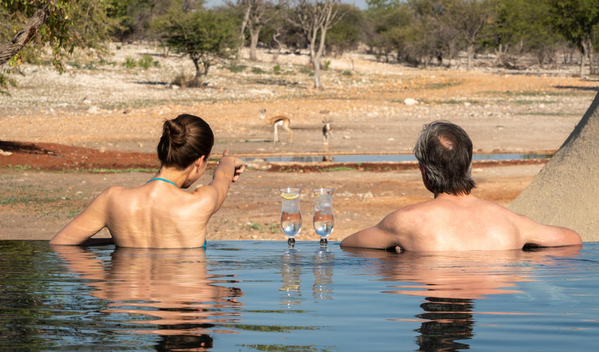 Infinity Pool with a view over waterhole