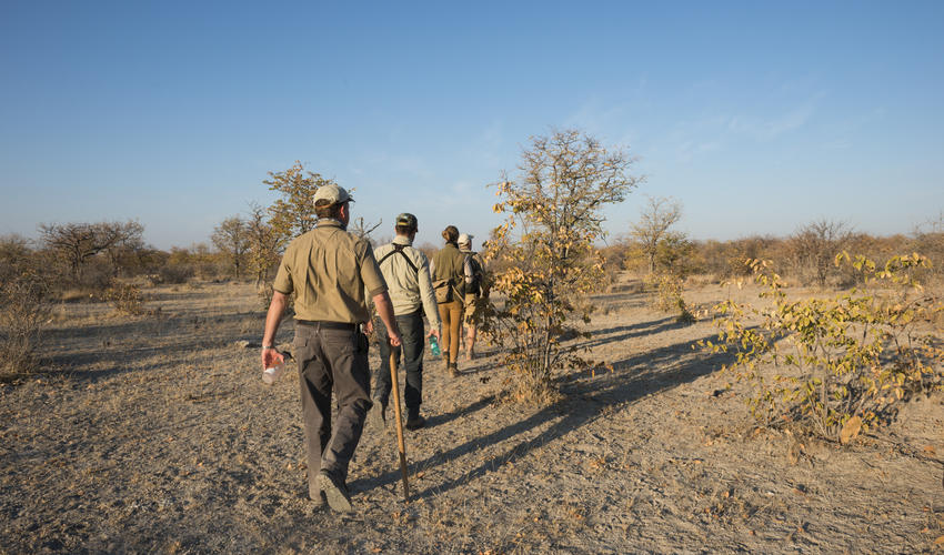 Guided walks on the Ongava Game Reserve