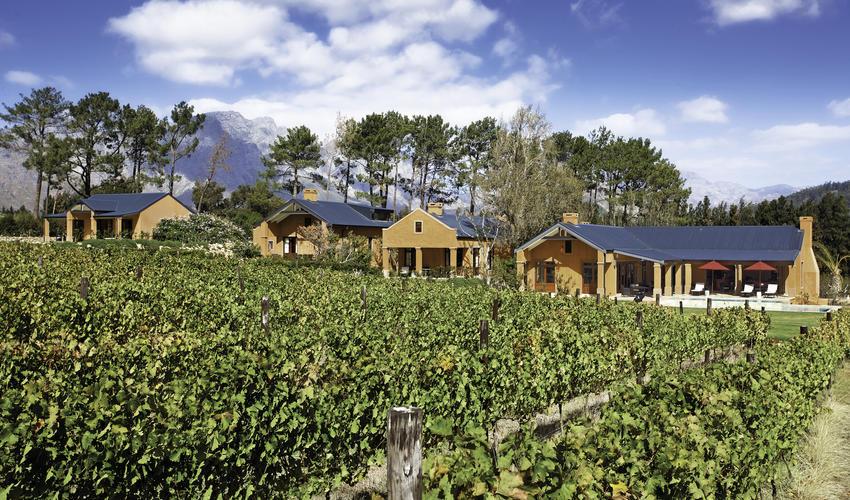 The Vineyard Suites