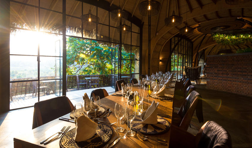 Dine under rainforest-inspired lighting