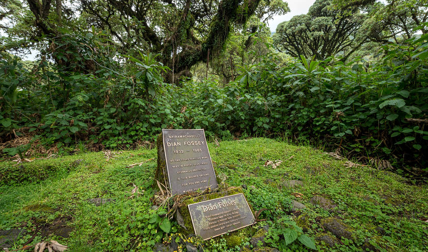 Dian Fossey's tomb at Karisoke