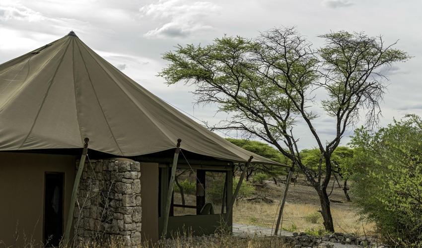 Tented accommodation at Onguma Tented Camp