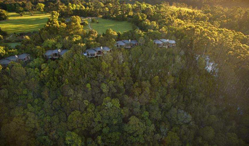 Bird's eye view of Tsala Treetop Lodge & the surrounding forest