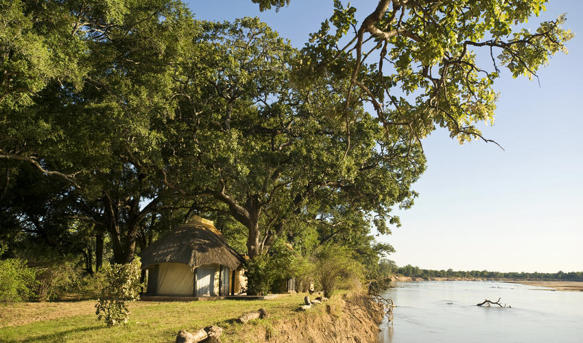 Tranquility on the edge of the Luangwa River