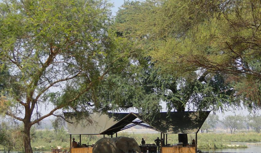 Voted best value safari camp in Africa!