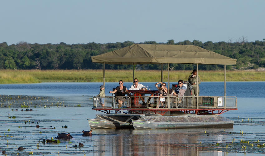 On safari on the Chobe River offering exceptional wildlife sightings