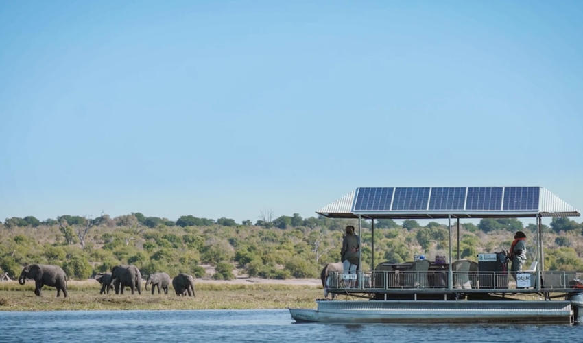A Chobe River Safari on the electric, solar powered boats