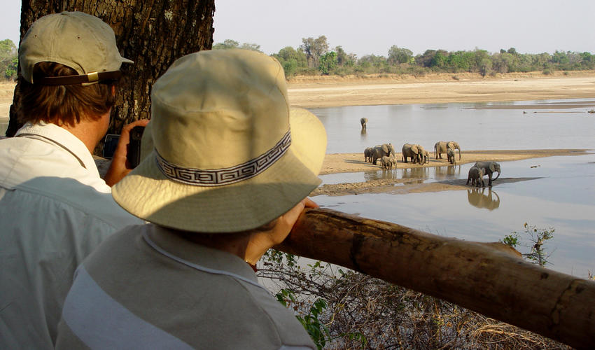 Shenton Safaris is known for its many hides which offer amazing photographic opportunites