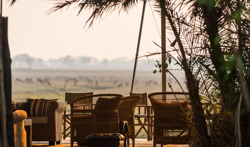 Busanga views