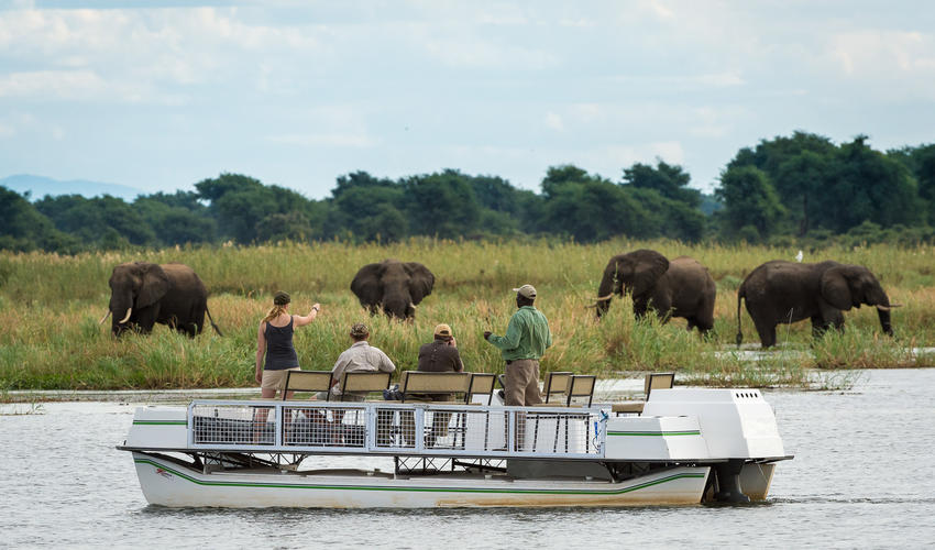 Game viewing from a boat cruise