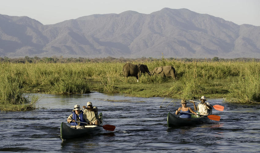 Canoeing on the Zambezi is a thrilling adventure