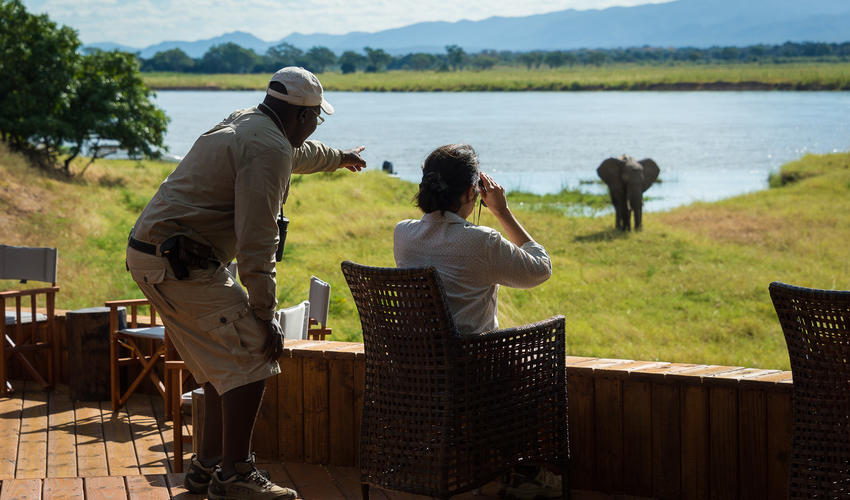 Great game viewing from as close as Ruckomechi's star-gazing deck