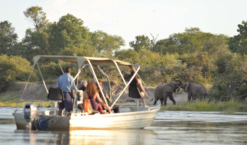 Abundant wildlife sightings on either side of the Zambezi River