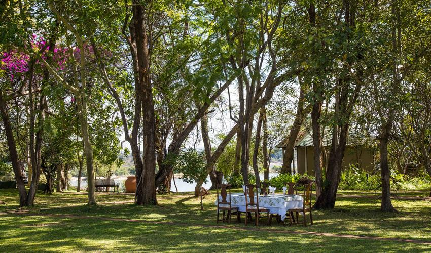 Have a delicious lunch in the gardens
