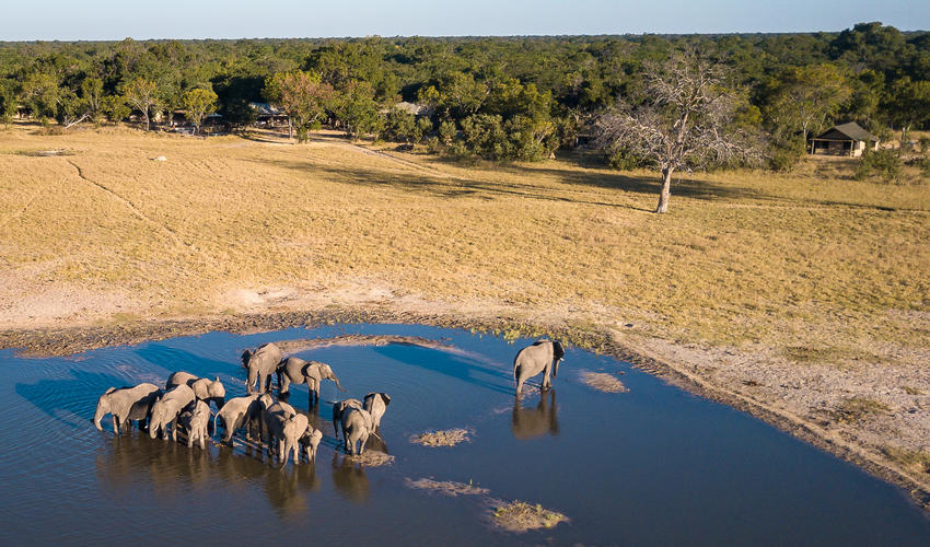 Aerial view of Little Makalolo waterhole with elephant drinking