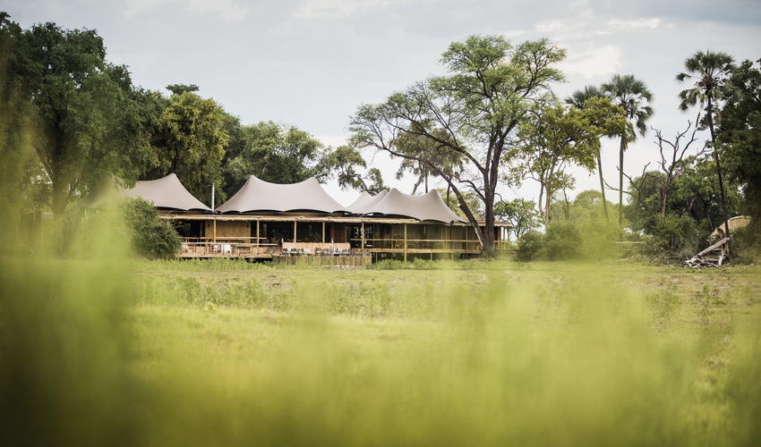 Each guest tent has a large deck and plunge pool from which to observe the passing wildlife