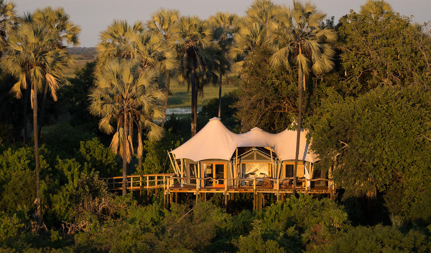 Kwetsani is famous for its tree-house style tents