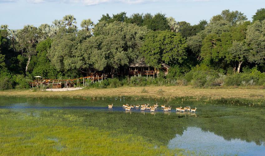 Tubu Tree Camp Landscape