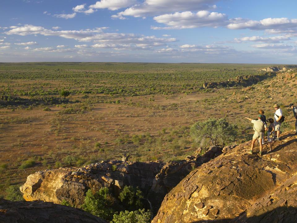 Mashatu Walking Safaris