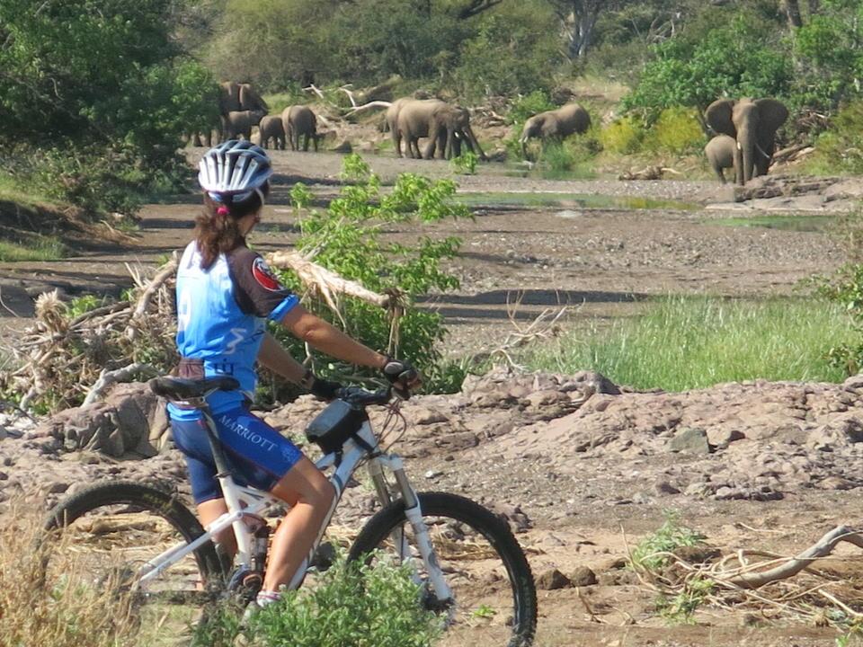 Mashatu Cycling Safari