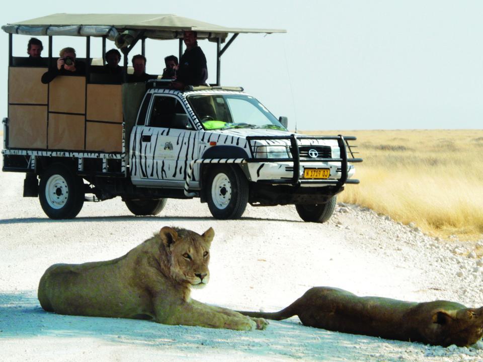 Der Etosha Nationalpark ist nur 10km entfernt.