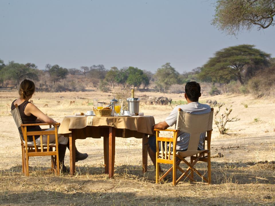 Geniessen Sie Ihr Frühstück, während die Wildtiere ihr Frühstück genießen