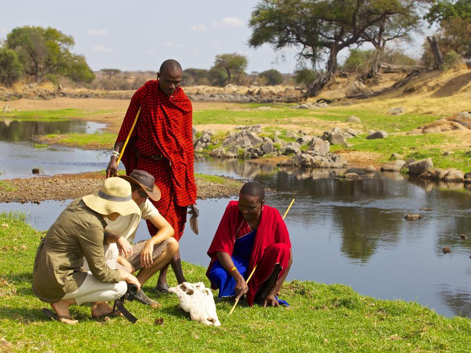 Erlauben Sie den Maasai-Stammesangehörigen, etwas von ihrem fundierten Wissen über den Nationalpark zu teilen, den sie zu Hause nennen