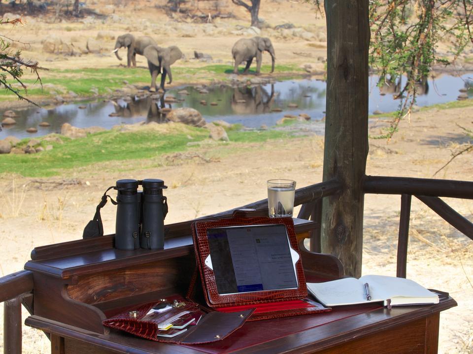 Pirschfahrten sind nicht immer notwendig, wenn so viele Wildtiere von den Bandas der Ruaha River Lodge aus zu sehen sind