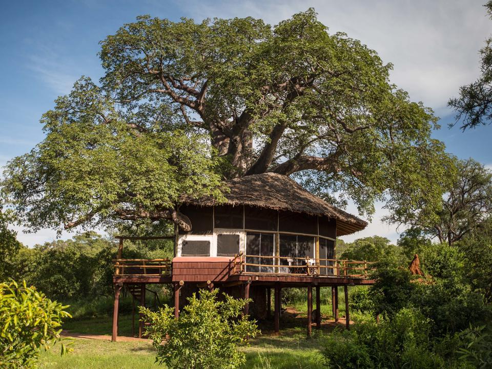 Außenansicht des Baumhauses