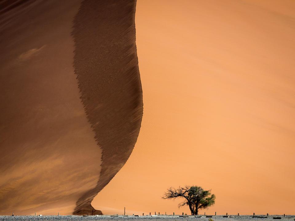 Eine der endlos photogenen Dünen von Sossusvlei