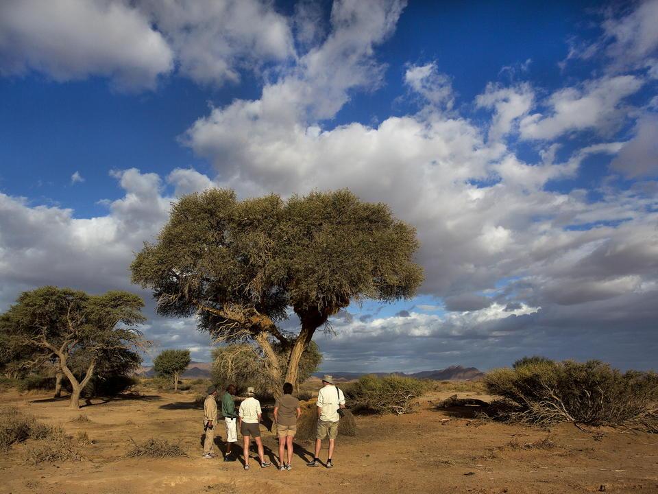 Ein Naturspaziergang von der Kulala Desert Lodge