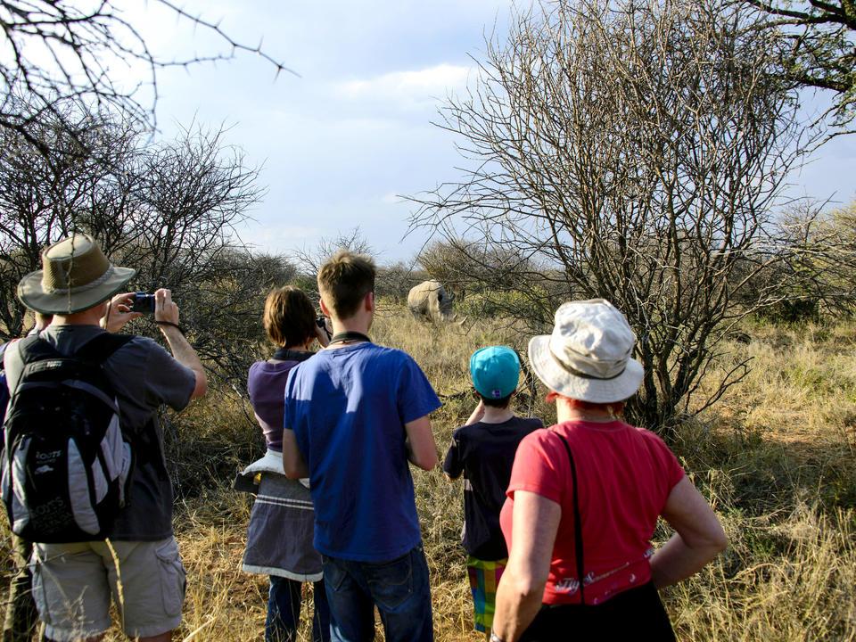 Tun Sie es wie die alten Buschmänner: Ein Tracker nimmt Sie auf eine Fußsuche nach Nashorn, Giraffen und anderen Tieren.