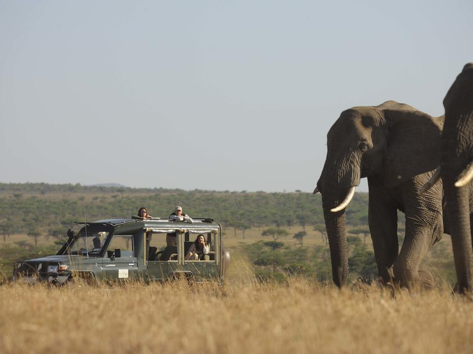 Kicheche Valley Game Drive