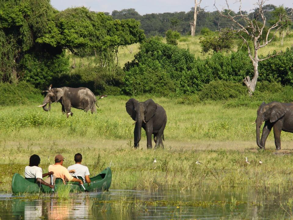 Paddeltour auf dem Chobe