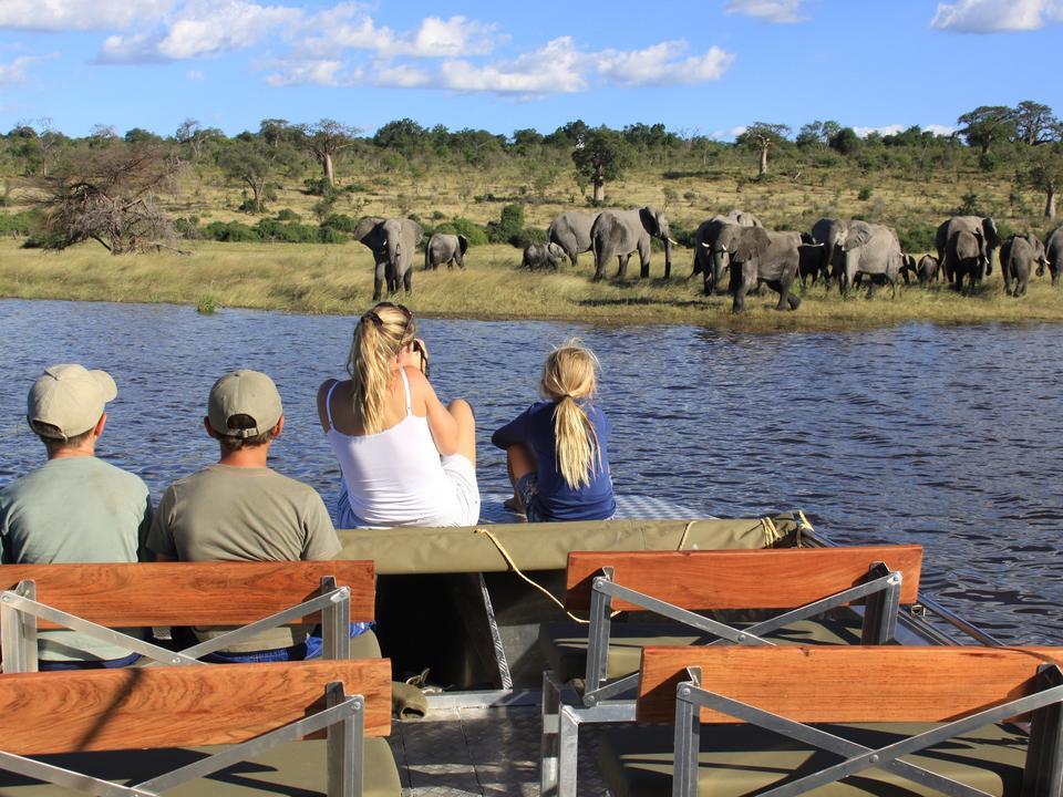 Respektvolle Begegnung mit Elefanten bei einer Bootsfahrt