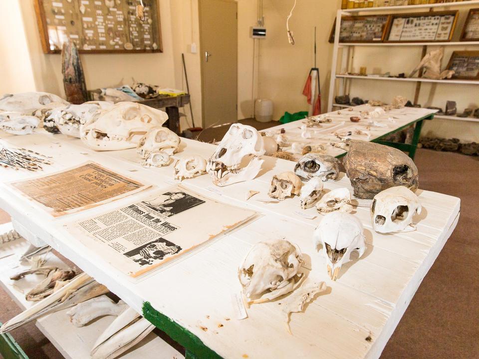 Mowe Bay Museum