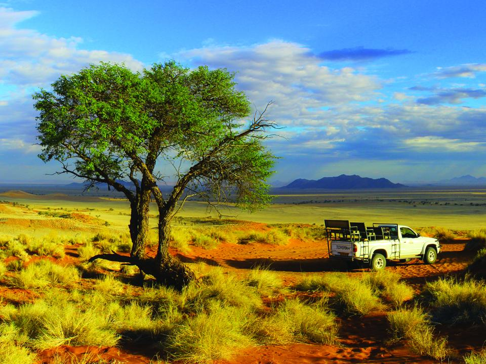 Ausflugsfahrt im Gondwana Namib Park