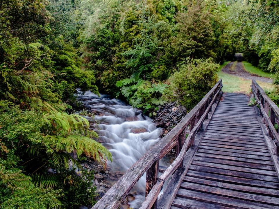 hiking and biking trails to open up our our wonderful temperate rain forests for you to discover.