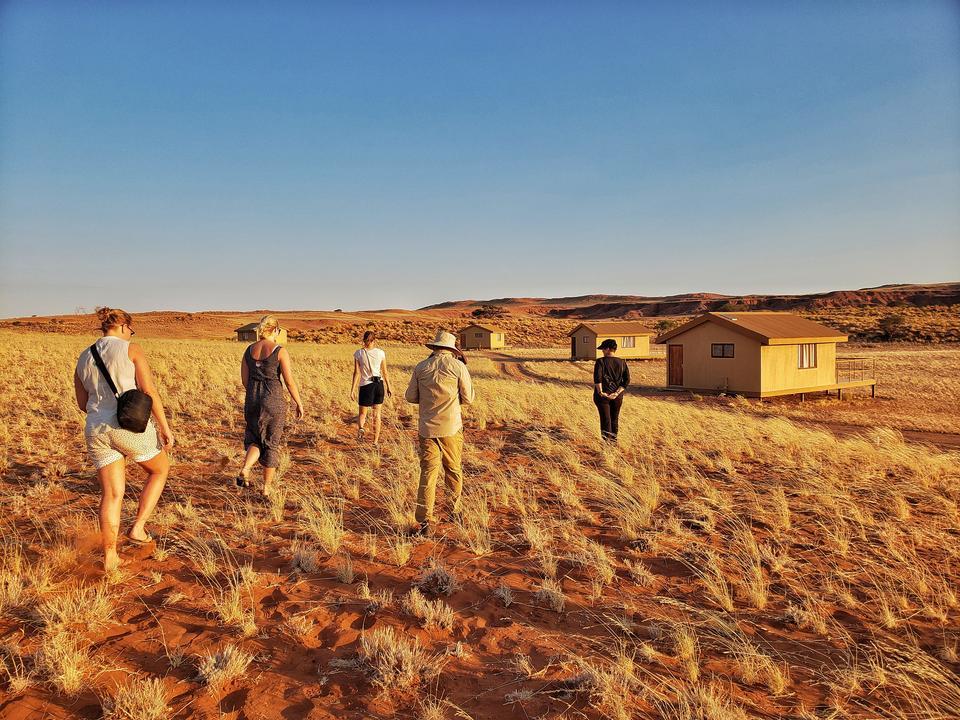 Erleben Sie die Wüste kurz nach Sonnenaufgang.