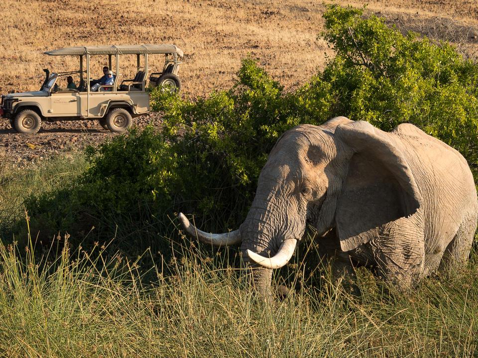 Elefant auf einer Spielfahrt
