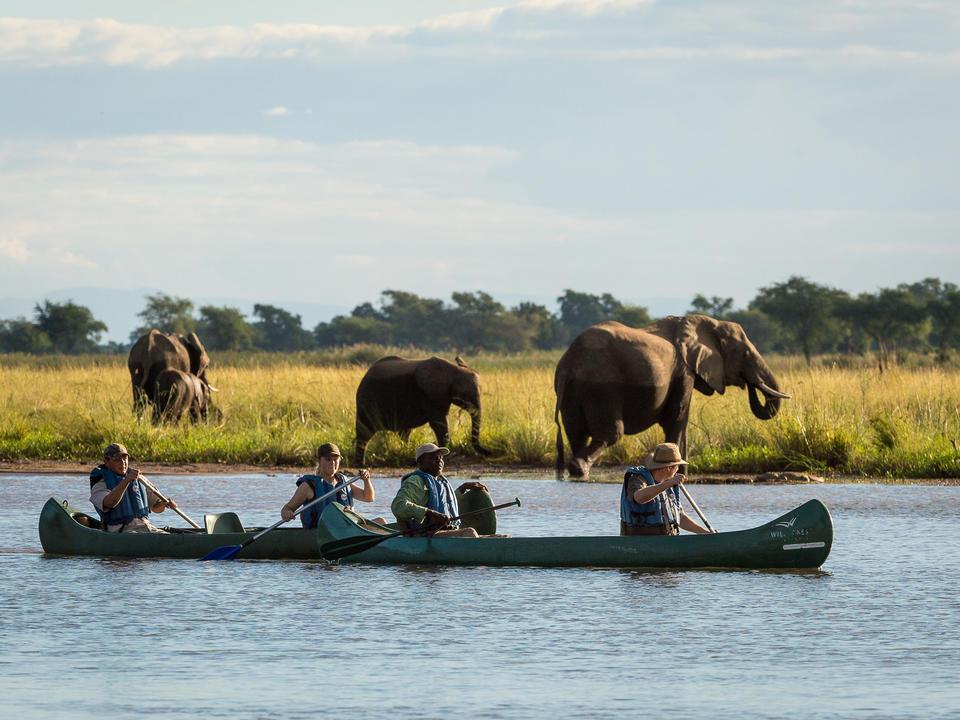 Kanufahren auf dem Zambezi ermöglicht eine hautnahe Spielbeobachtung
