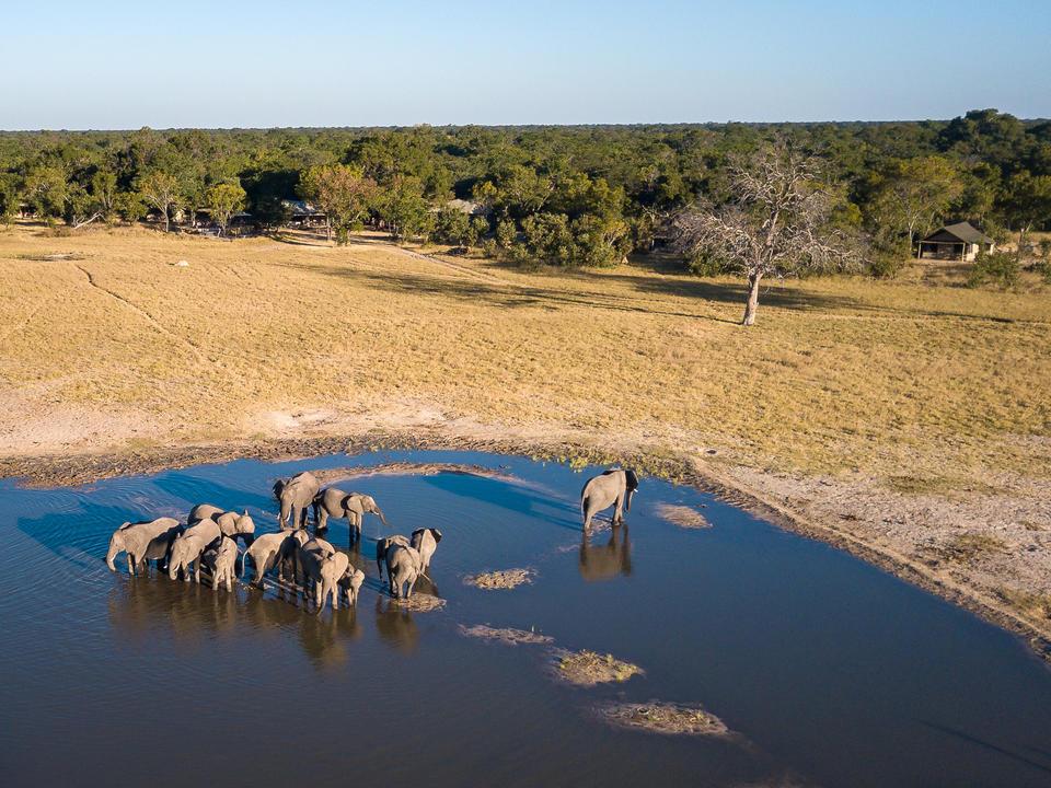 Luftaufnahme von Little Makalolo Wasserloch mit Elefantentrinken