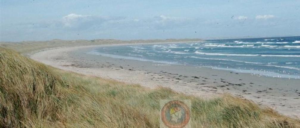 PortFairyBeach/BeachSafe