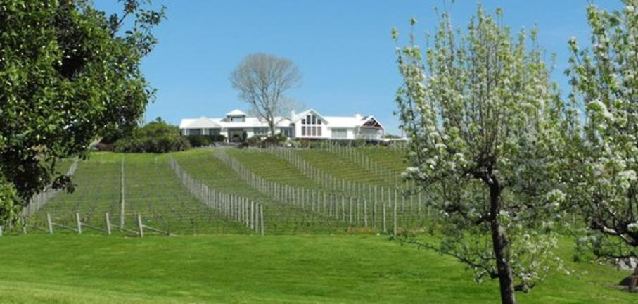 Ruby Bay Vineyard Lodge & Cottage