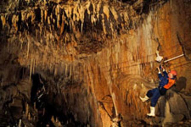 WaitomoAdventures