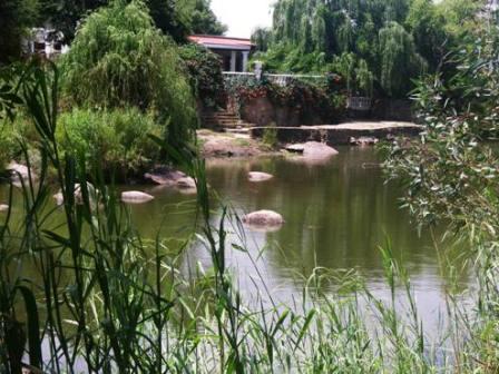 Otters Den House