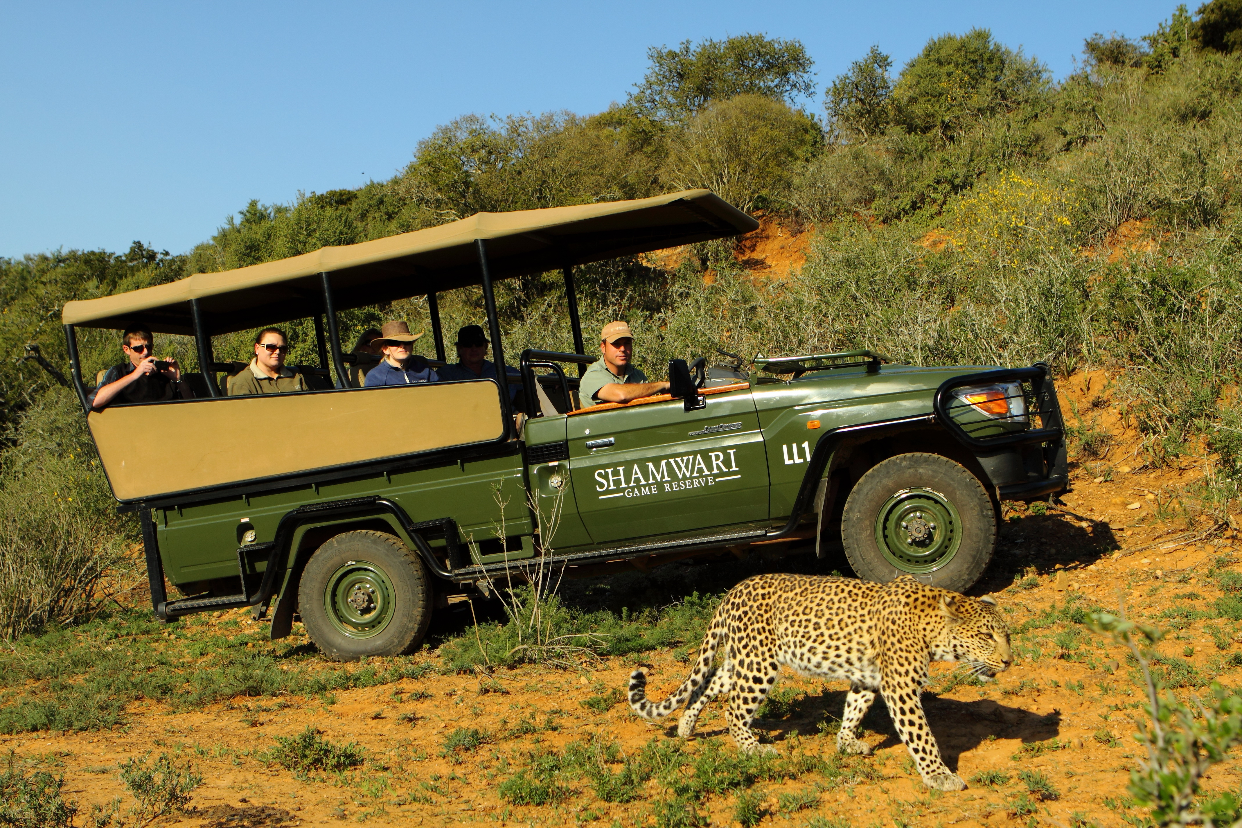 Game Lodge specials Specials in Game Lodge from the Game Lodge experts. Best value holidays from AfricaStay.